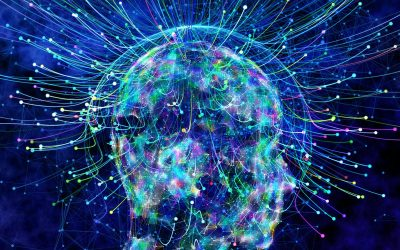 This is Your Consciousness